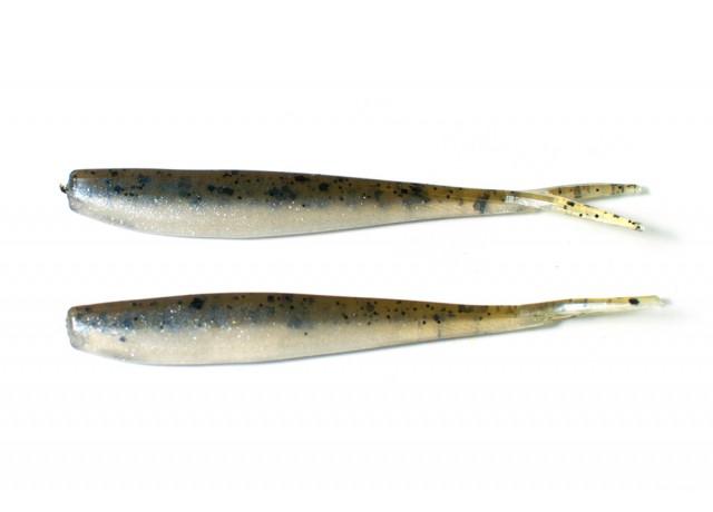 V-staart Eurasian minnow (8 cm)